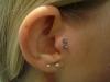 piercing 33