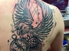 eagle_tattoo_adler_realistic_grafic_abstract_sketch_black_grey_el_color_solido_lohmar_ingo_wirths.jpg