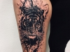 tiger_tattoo_realistic_grafic_abstract_black_splash_trash_watercolor_el_color_solido_lohmar_ingo_wirths.jpg